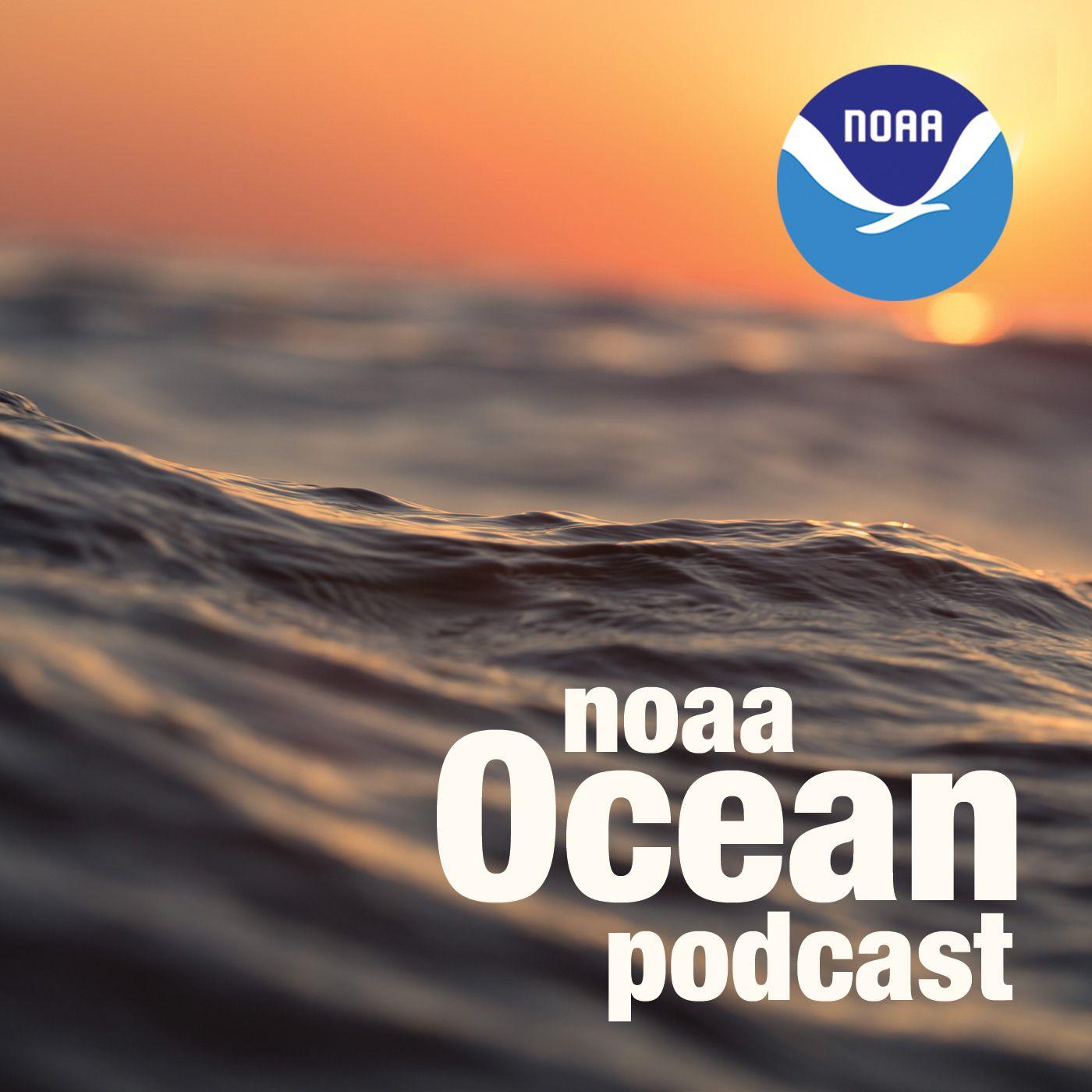 ocean podcast banner