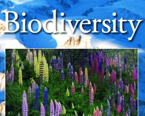 Submit to this Special Issue on: Remote Sensing Applications for Tracking Biodiversity