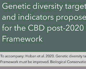 GEO BON Genetic Composition Working Group engages CBD with Indicators publication, a Policy Brief, webinars